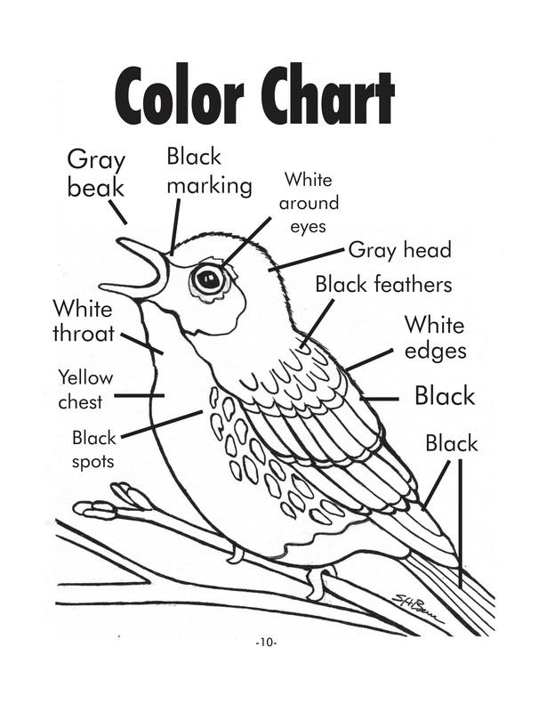 615x800 Kirtland's Warbler Coloring Sheet