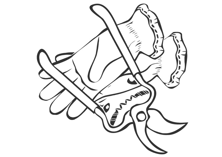 750x531 Coloring Page Pruning Shears And Gardening Gloves