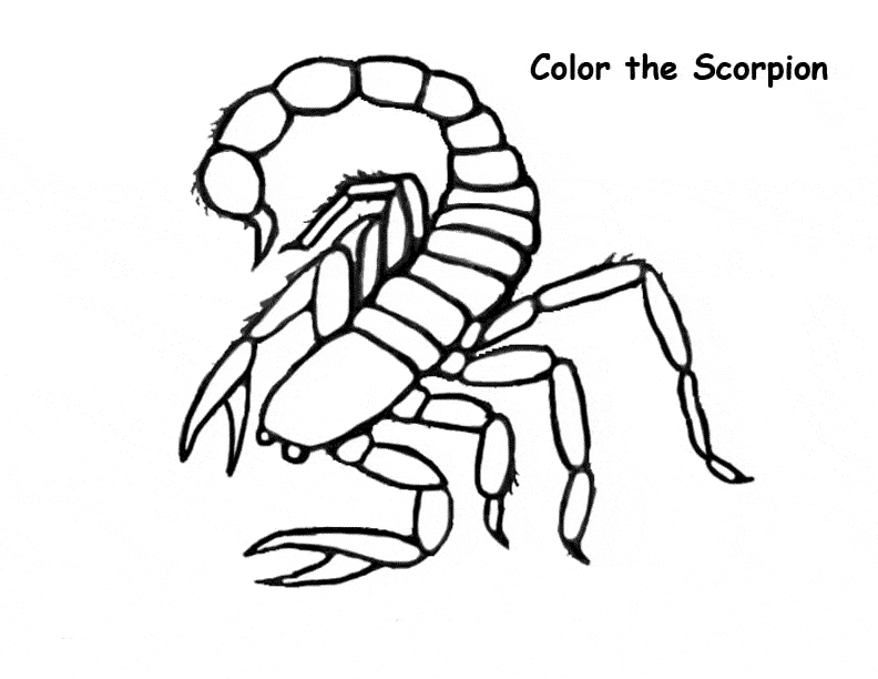 Scorpio Coloring Pages