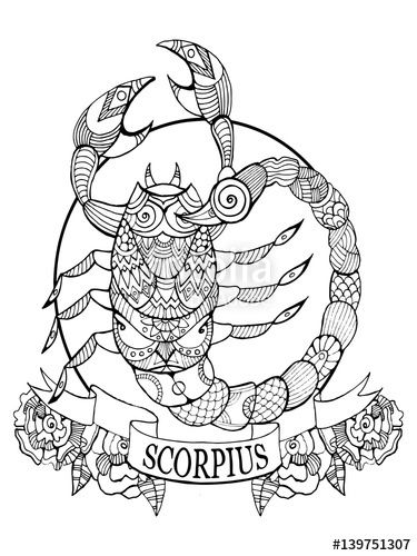 375x500 Scorpio Zodiac Sign Coloring Book Page For Adults Fotolia