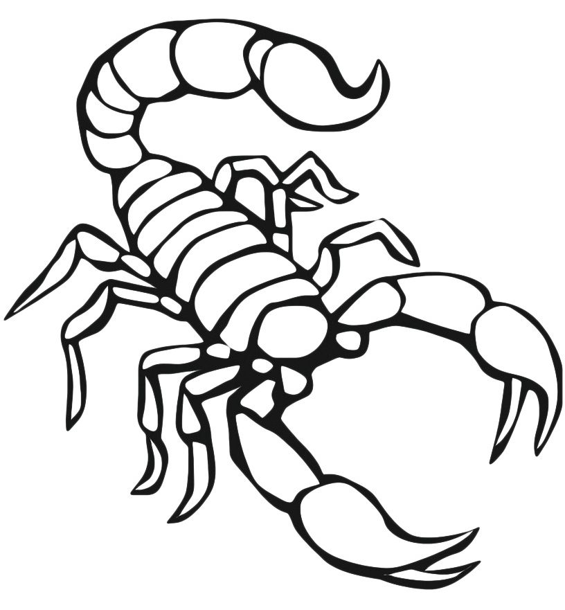 816x881 Scorpion Coloring Pages To Print For Scorpion Coloring Page