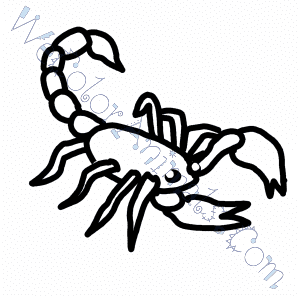 300x300 Scorpion Coloring Pages