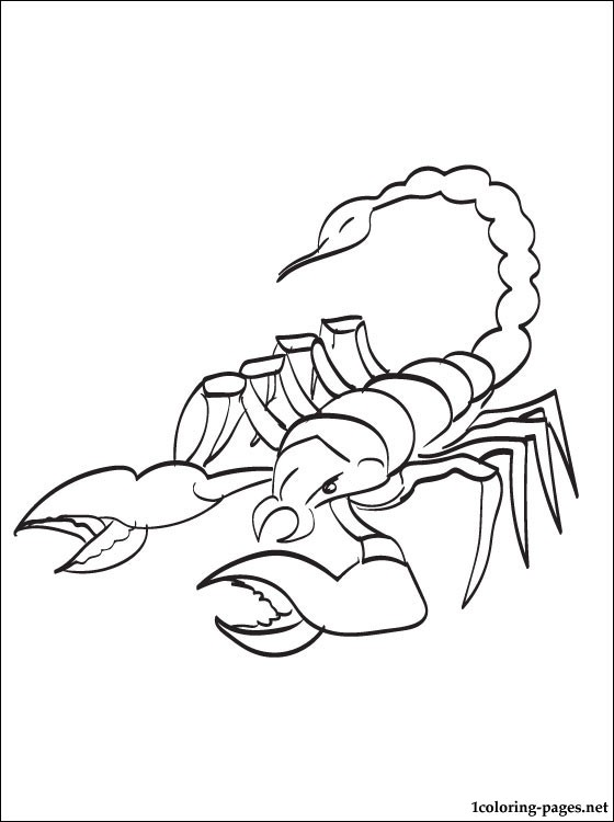 560x750 Scorpion Coloring Page To Print Out Coloring Pages