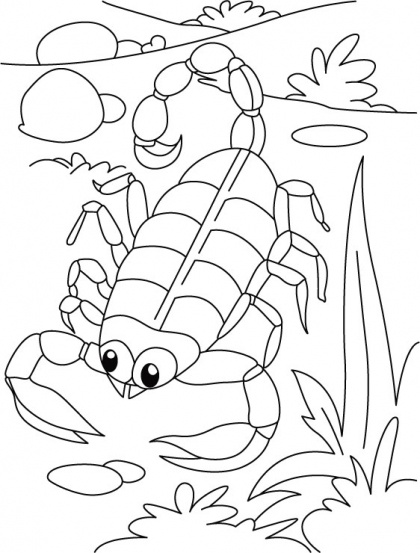 420x553 Top Free Printabe Scorpion Coloring Sheets For Your Toddler