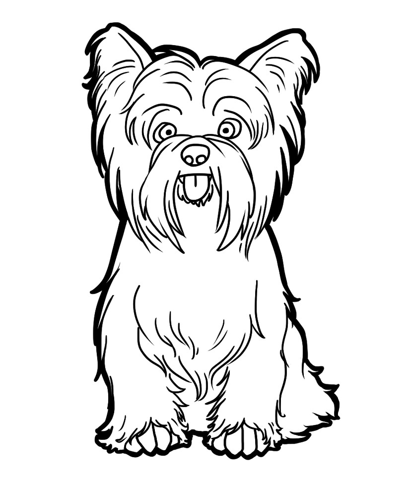 Scottish Terrier Coloring Pages