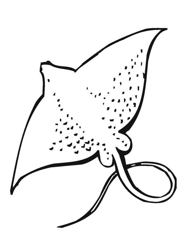 600x776 Giant Stingray Free Sea Animals Coloring Page