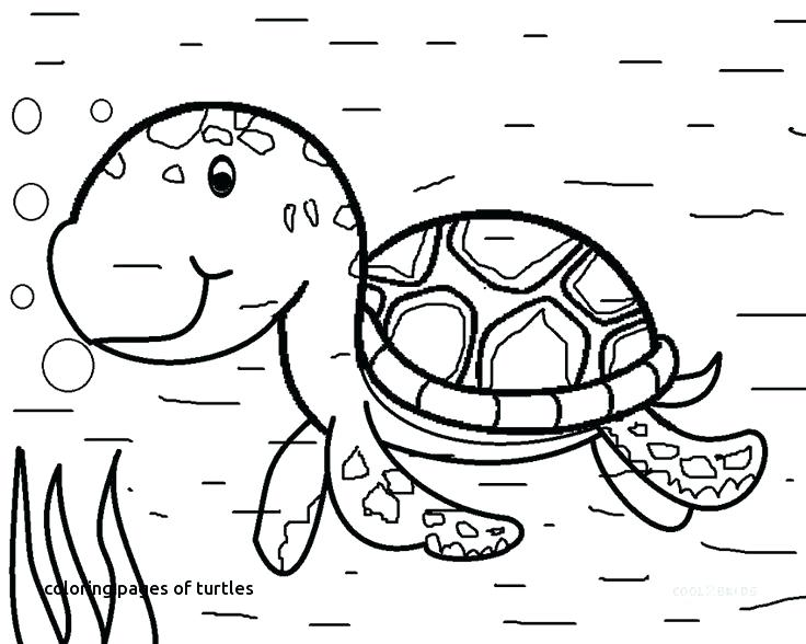 736x588 Ocean Animal Coloring Pages Water Animals Coloring Pages Fancy