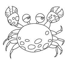 220x220 Sea Animals Coloring Pages