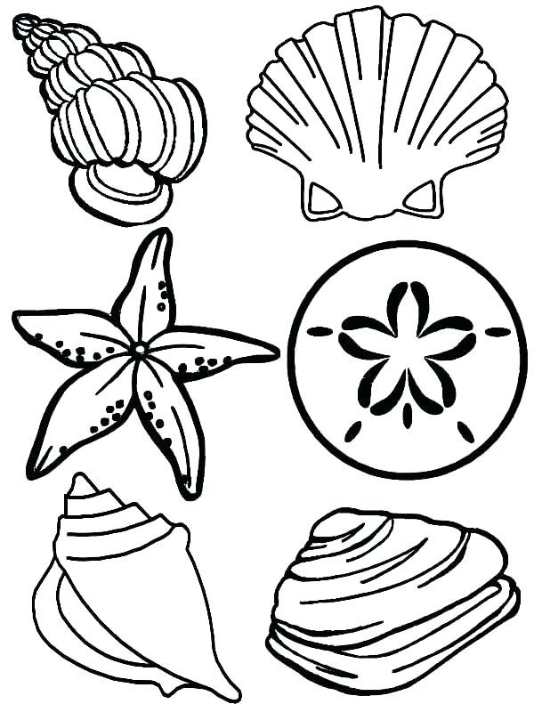 600x800 Sea Animal Coloring Pages Coloring Pages Sea Animals Sea Animal