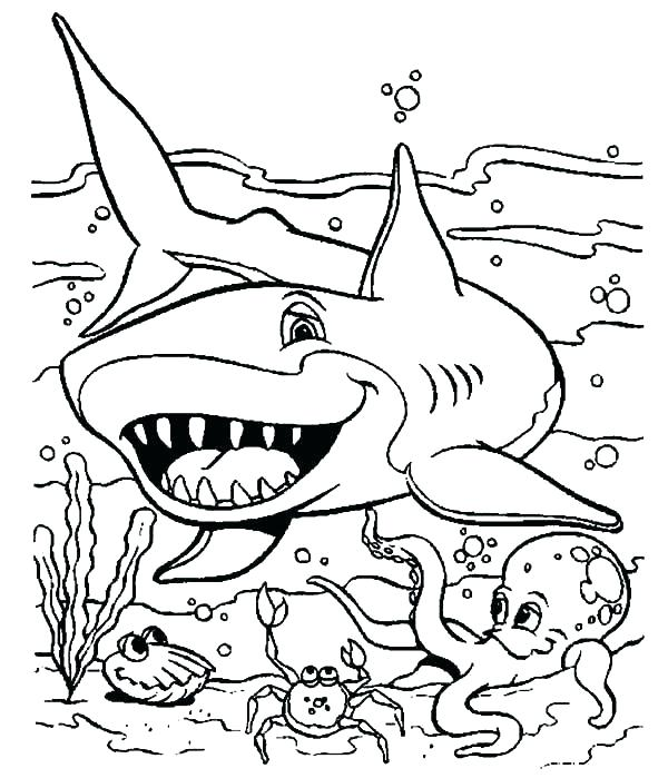 600x699 Ocean Animals Coloring Pages Pdf Sea World Coloring Pages Sea