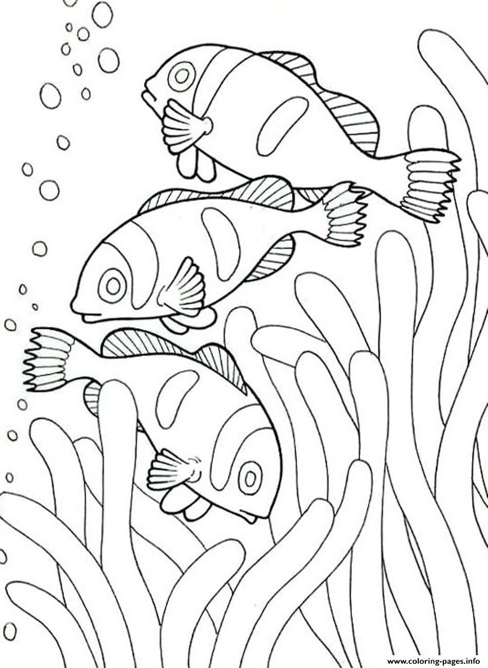 951x1303 Coloring Pages Of Sea Animals Clown Coloring Pages Printable