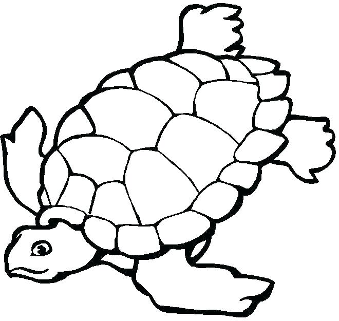 660x625 Coloring Pages Of Sea Animals Underwater Coloring Pages Ocean
