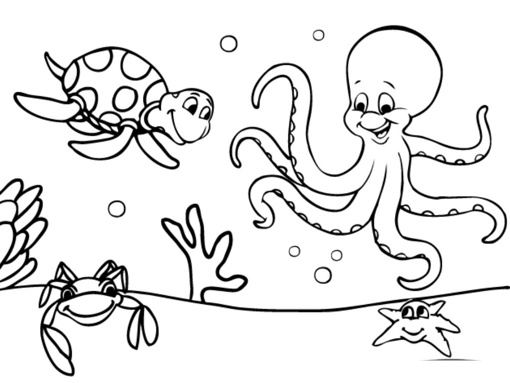 1024x768 Innovative Sea Animals Coloring Pages Free Printable Ocean General