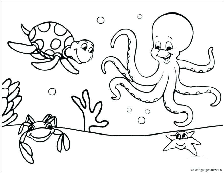 878x683 Ocean Animals Coloring Pages Underwater Animals Coloring Pages