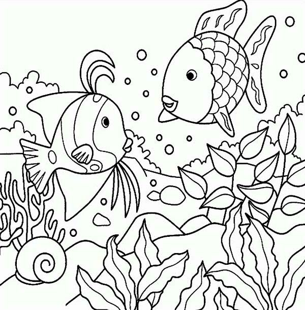 600x610 Sea Coloring Pages Free Rainbow Fish Sea Animals Coloring Page