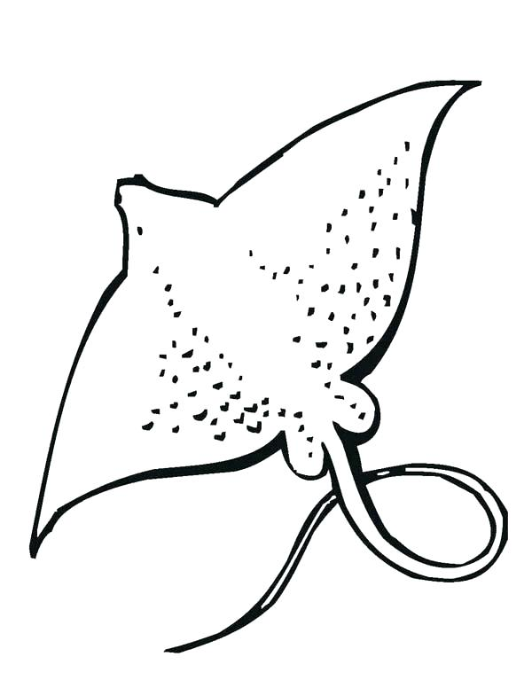 600x776 Animal Coloring Book Pages As Well As Coloring Pages Of Sea