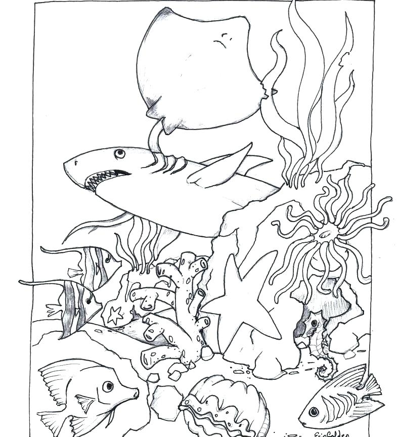 785x864 Animal Coloring Book Pages Farm Animals Coloring Pages Free