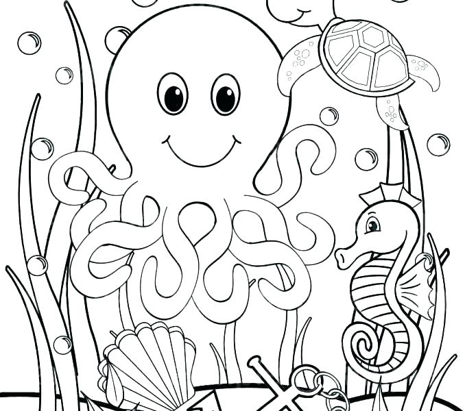 678x600 Sea Lion Coloring Page Under Sea Coloring Pages Free Sea Lion Sea