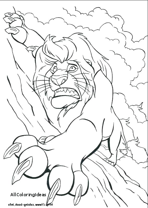 567x794 Sea Lion Coloring Pages Lion King Coloring Book Also Lion King
