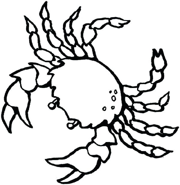 600x616 Sea Creatures Coloring Pages Sea Creature Coloring Pages Fish Sea