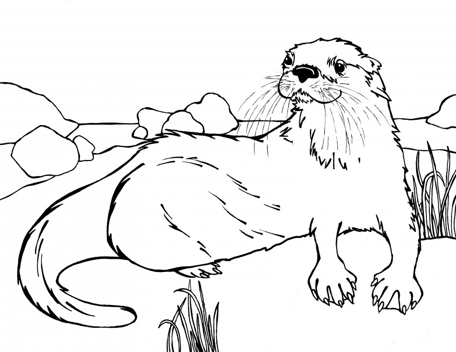 940x726 Otter Coloring Pages Sea Otter Coloring Pages Google Search Sea