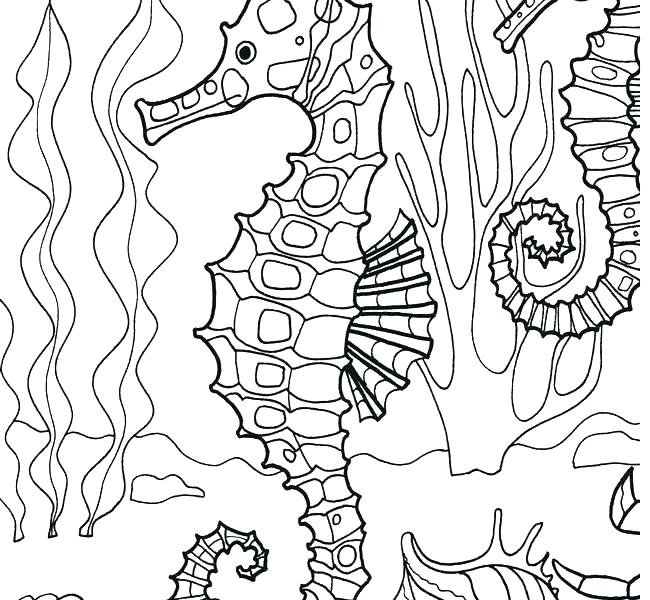 650x600 Sea Otter Coloring Pages Cartoon Sea Otter Coloring Pages For Kids