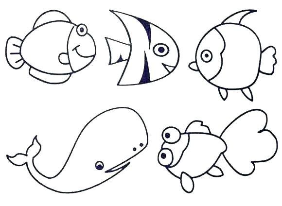 580x424 Sea Otter Coloring Pages Under The Sea Coloring Sea Life Coloring