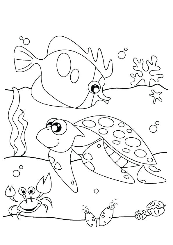 595x842 Beautiful Otter Coloring Pages And Sea Otter Coloring Page Harry