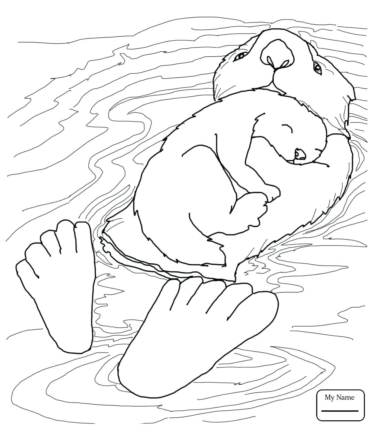 1224x1412 Sea Otters Coloring Pages Gallery Coloring For Kids