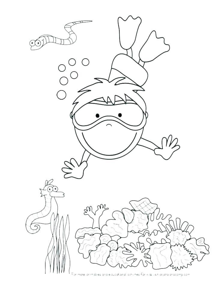 736x949 Sea Urchin Coloring Page Sea Otter Coloring Page Sea Urchin
