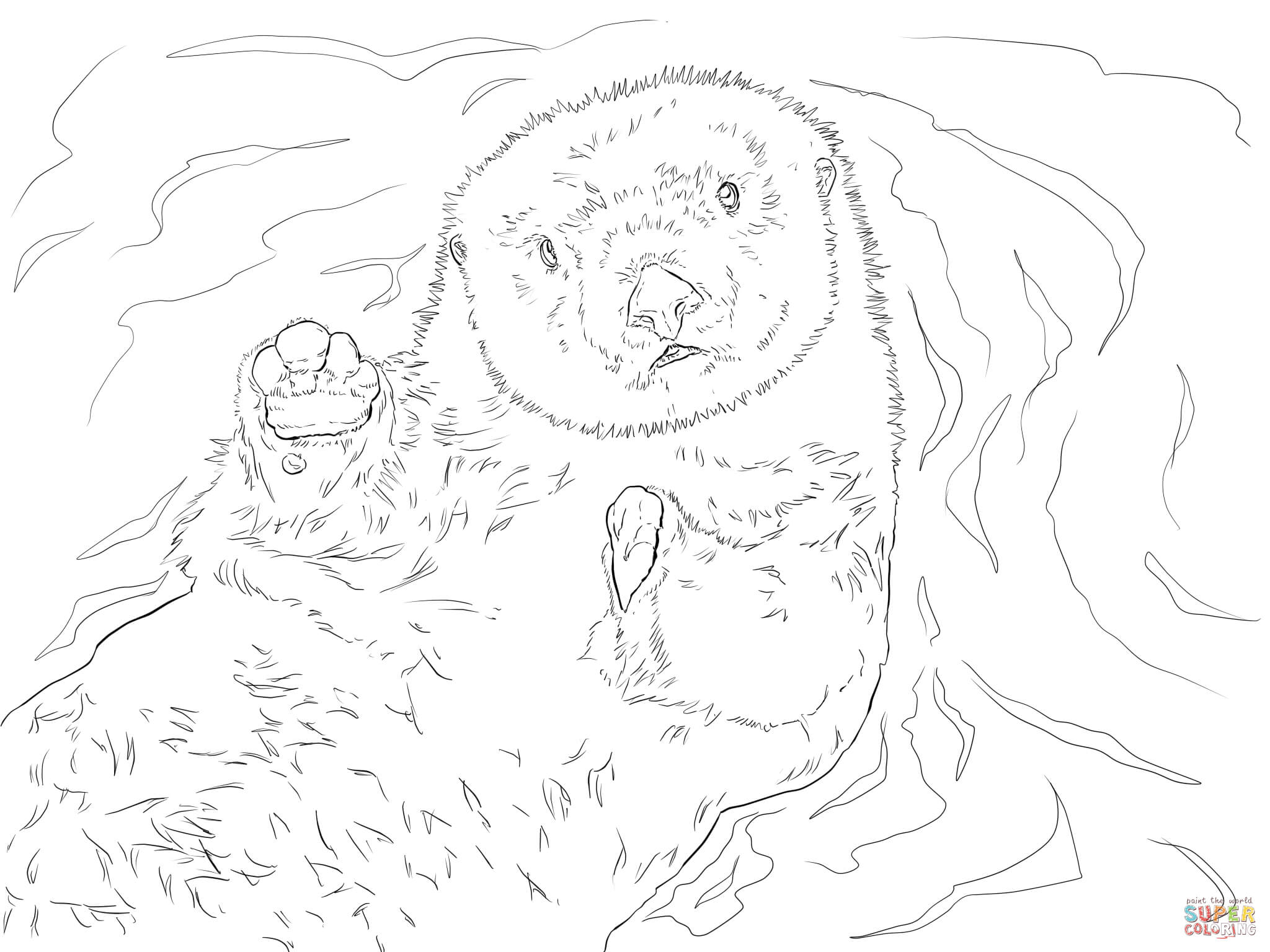 2048x1536 Wonderful Sea Otter Coloring Page Cool Ideas P