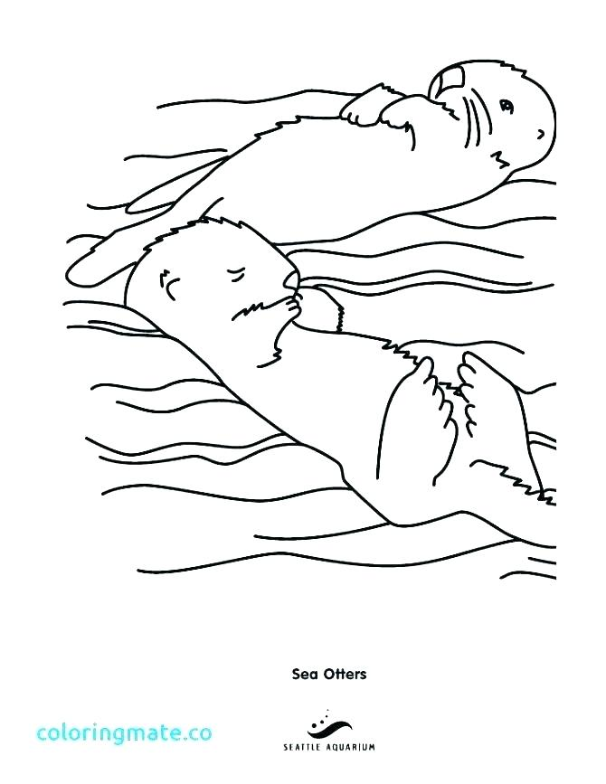 670x867 Otter Coloring Pages