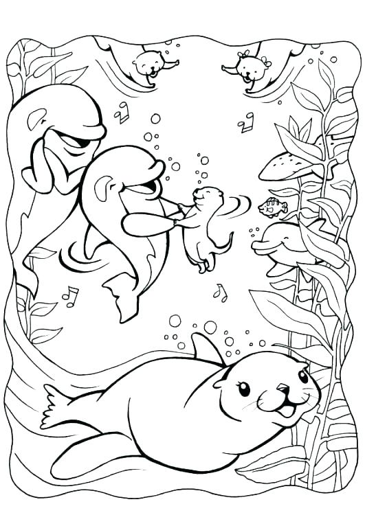 531x750 Sea Otter Coloring Pages Free