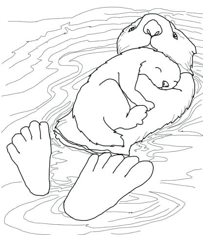 416x480 Otter Coloring Page Sea Otter And Cute Baby With Sleep Activity