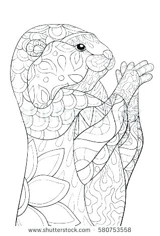 318x470 Otter Coloring Page Sea Otter Coloring Page Otter Coloring Page