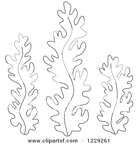 450x470 Plants Coloring Pages Ocean Plants Coloring Pages Amazing Coloring