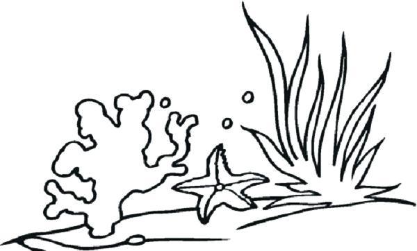 600x362 Plants Coloring Pages Sea Plants Coloring Pages Plants Vs Zombies