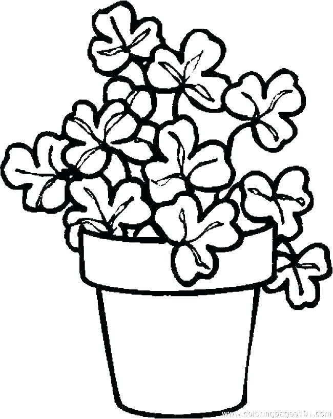 650x818 Plants Coloring Pages The Sun And Plants Of Nature Coloring Page