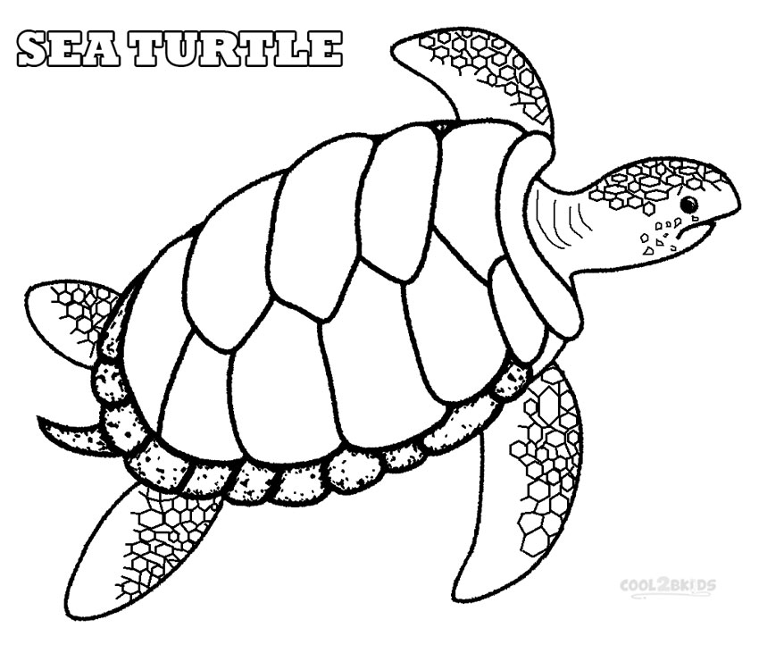850x731 Printable Sea Turtle Coloring Pages For Kids