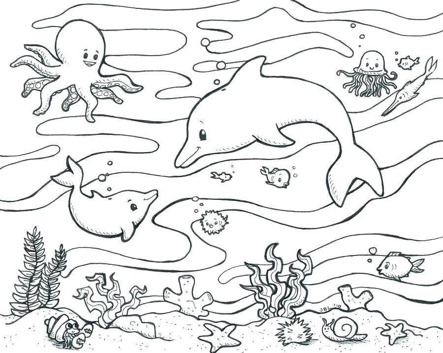 900x717 Ocean Plants Coloring Pages Deep Sea Creature Coloring Pages Kids