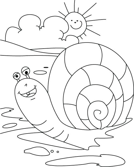 550x684 Sea Snail Free Coloring Page Download Print Online Coloring Sea