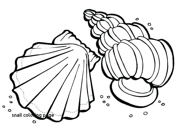 600x442 Snail Coloring Page Snail Coloring Page Sea Animals Coloring Pages