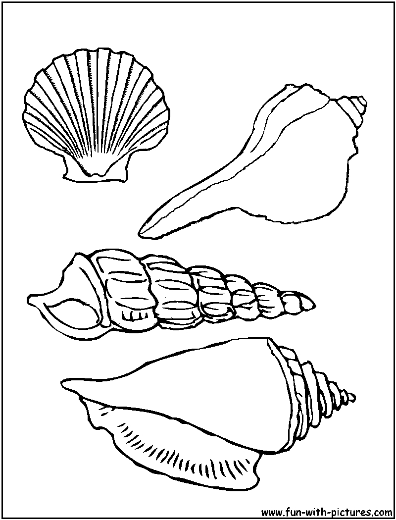 800x1050 Snail Coloring Pages Free Coloring For Kids