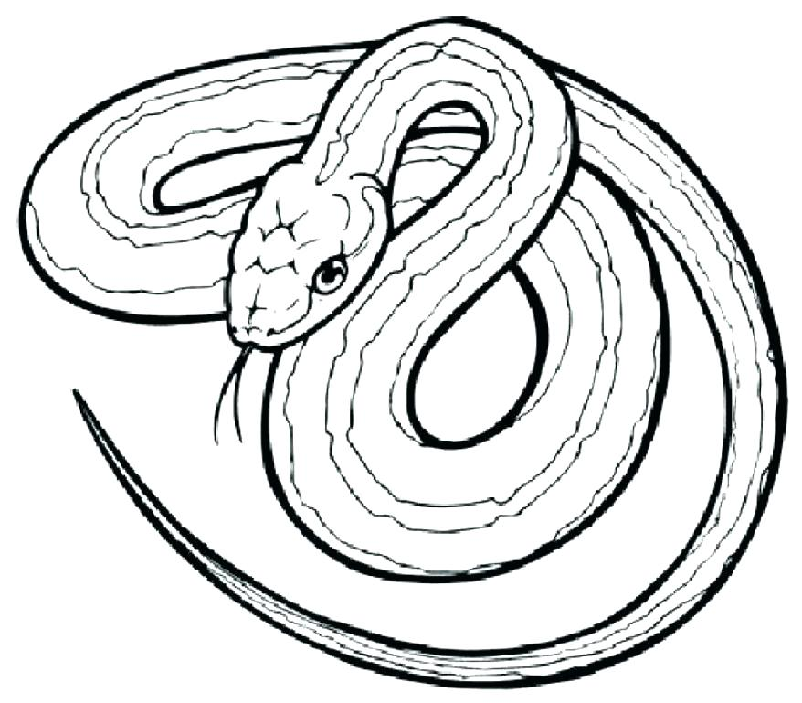 878x769 Sea Serpent Coloring Pages Fancy Snake Coloring Page In Coloring