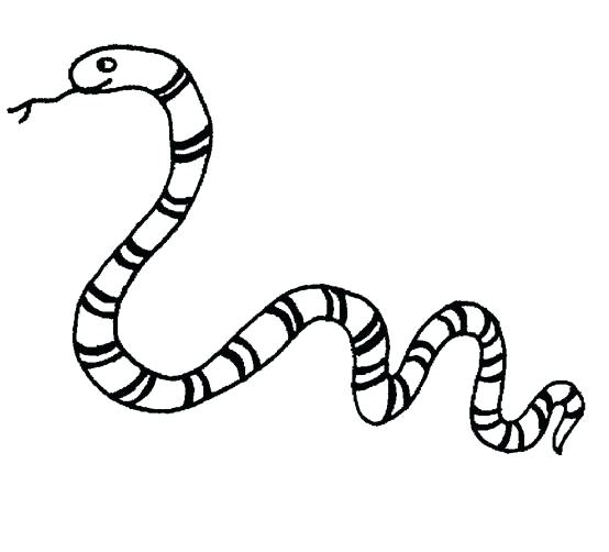 554x502 Snake Coloring Pages Free Coloring Pages Of Snake Snake Coloring