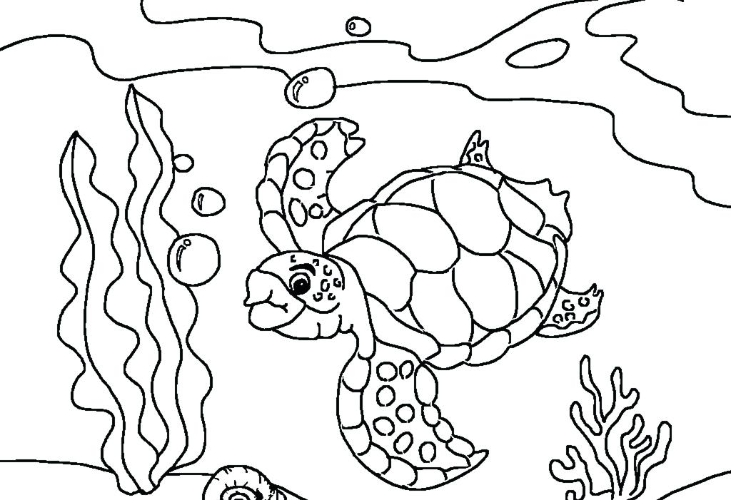 1024x701 Turtle Coloring Page Sea Turtles Coloring Pages Ninja Turtle