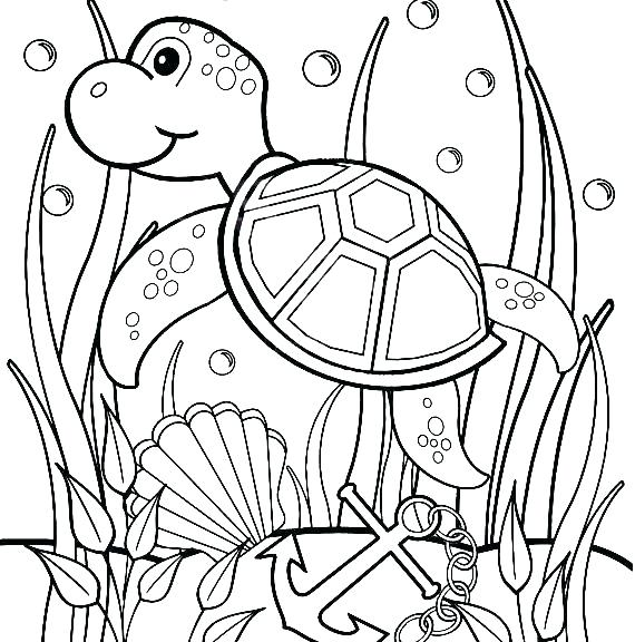 570x576 Underwater Coloring Pages Turtles Coloring Pages Baby Sea Turtle