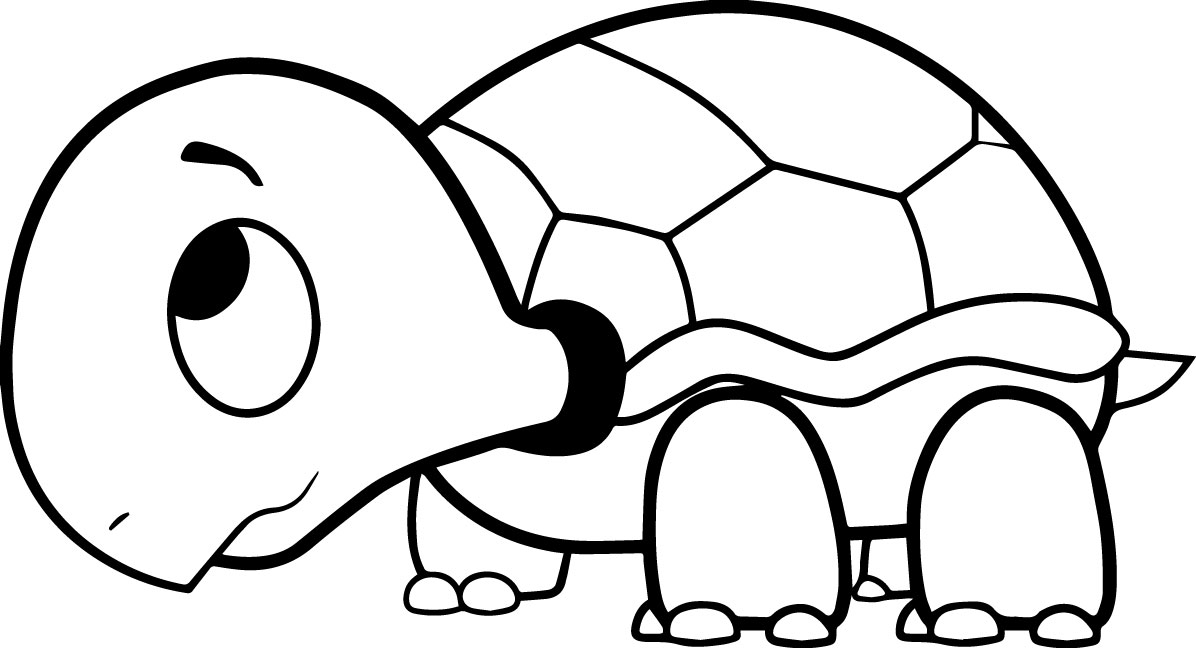 1196x648 Drawn Sea Turtle Coloring Page Pencil And In Color