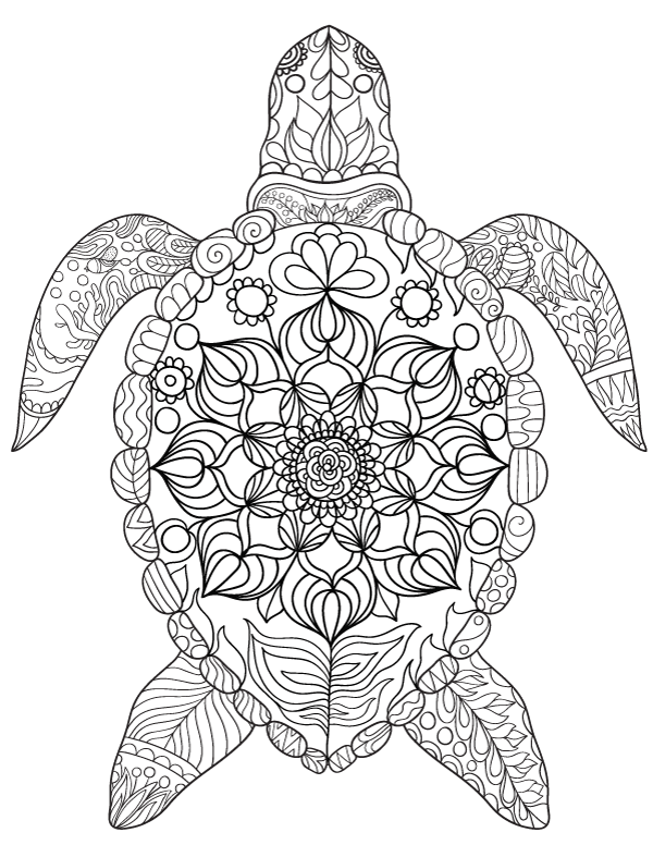 600x776 Free Printable Sea Turtle Adult Coloring Page Download It In Pdf