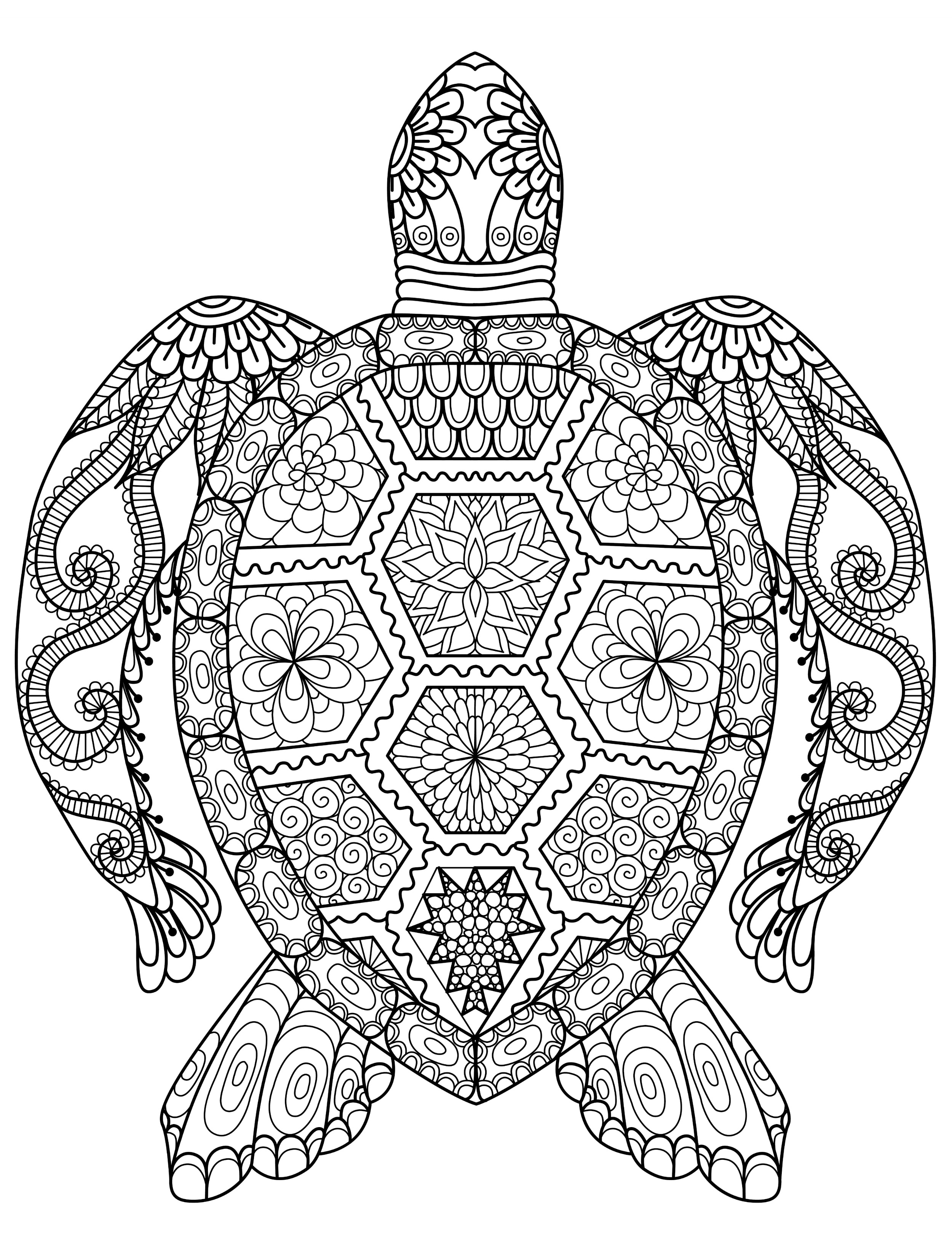 Sea Turtle Printable Coloring Pages